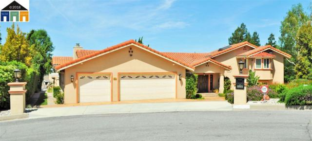 46925 Aloe Ct, Fremont, CA 94539 (#40837899) :: Armario Venema Homes Real Estate Team