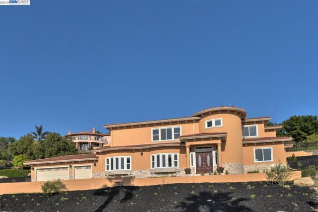 44631 Highland Pl, Fremont, CA 94539 (#40838004) :: Armario Venema Homes Real Estate Team