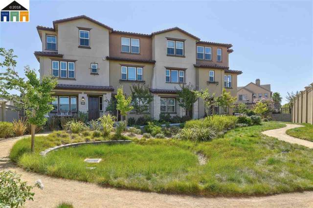 2881 Predio Terrace, Fremont, CA 94539 (#40838067) :: Estates by Wendy Team