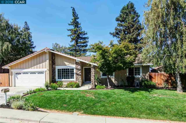 8 Petar Ct, Clayton, CA 94517 (#40838097) :: Estates by Wendy Team
