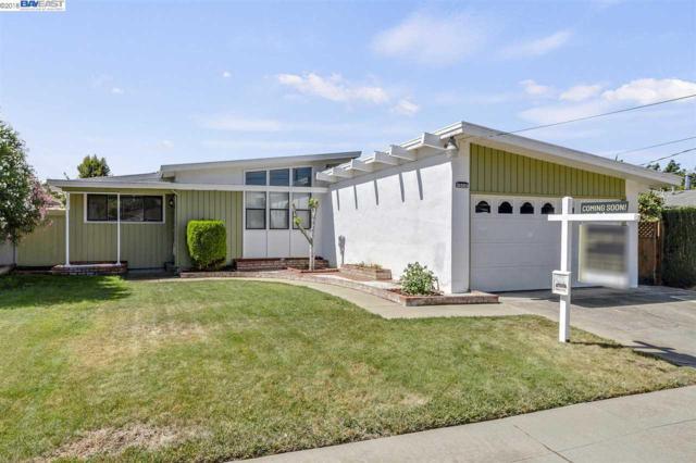 31093 Meadowbrook Avenue, Hayward, CA 94544 (#40838204) :: Estates by Wendy Team
