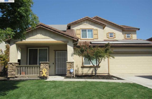 1803 Star Tulip St, Manteca, CA 95337 (#40838327) :: Estates by Wendy Team