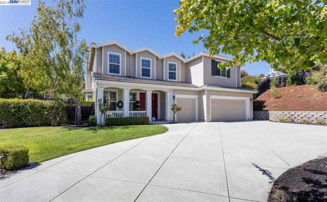 240 Napier Ct, Pleasanton, CA 94566 (#40838336) :: Estates by Wendy Team