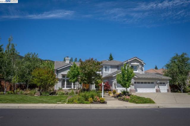 7961 Paragon Circle, Pleasanton, CA 94588 (#40838351) :: The Lucas Group