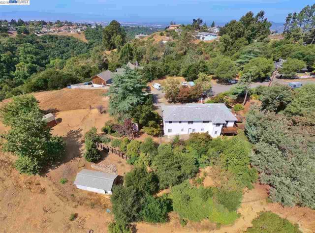 28058 Quercus Ct, Hayward, CA 94542 (#40838406) :: Estates by Wendy Team