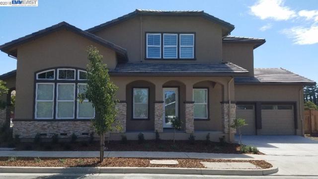 1622 Mento Terrace, Fremont, CA 94539 (#40838476) :: Estates by Wendy Team