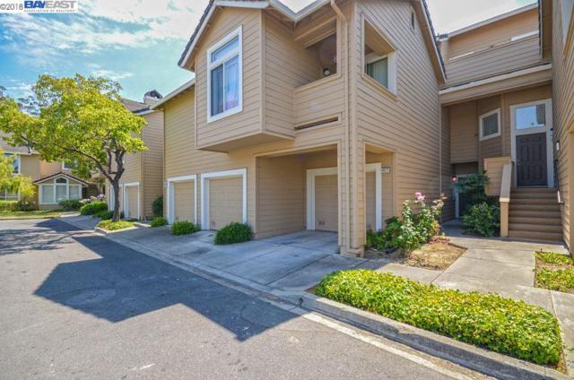 34573 Falls Ter, Fremont, CA 94555 (#40838529) :: Estates by Wendy Team