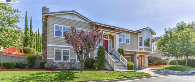 30010 Woodthrush Place, Hayward, CA 94544 (#40838600) :: Estates by Wendy Team