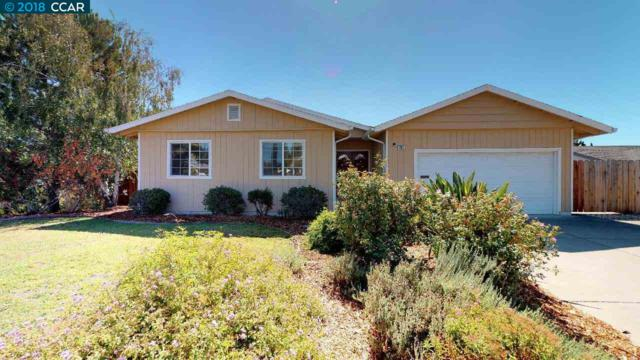 281 Southwind Dr, Pleasant Hill, CA 94523 (#40838631) :: Estates by Wendy Team