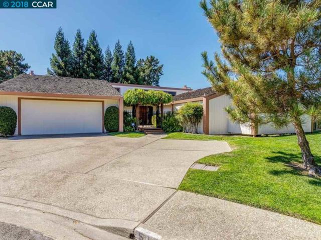 511 Hawkridge Terrace, Orinda, CA 94563 (#40838658) :: Armario Venema Homes Real Estate Team