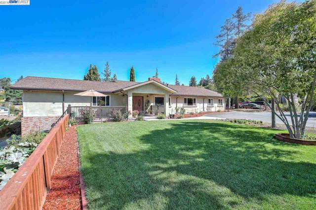 18757 Lamson Rd, Castro Valley, CA 94546 (#40838710) :: Estates by Wendy Team