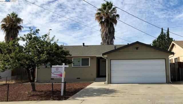 43217 Charleston Way, Fremont, CA 94538 (#40838760) :: The Lucas Group
