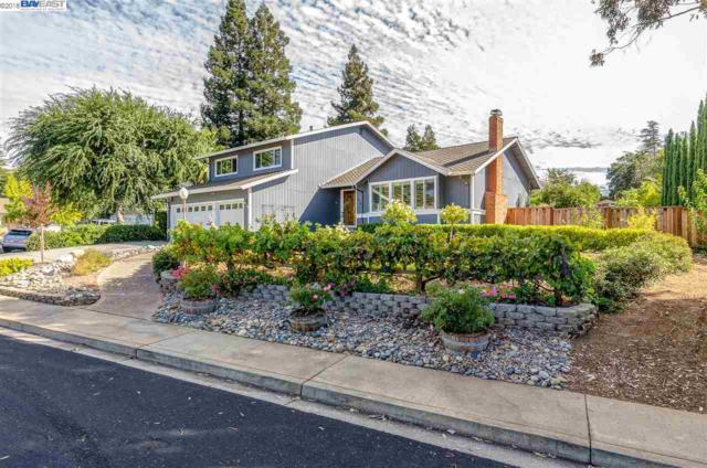 32 Atchinson Stage Court, Clayton, CA 94517 (#40838842) :: Estates by Wendy Team