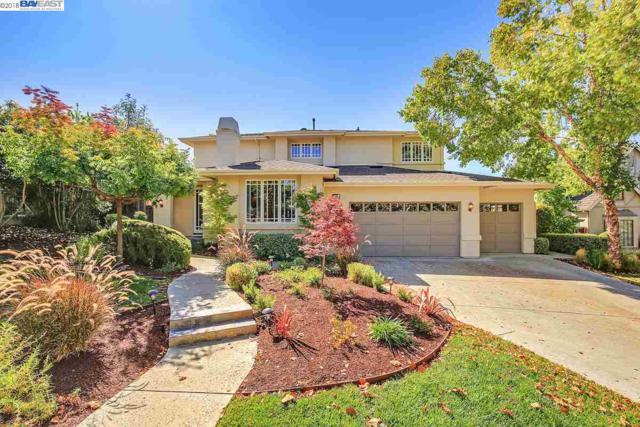 43451 Mission Siena Cir, Fremont, CA 94539 (#40838870) :: Armario Venema Homes Real Estate Team