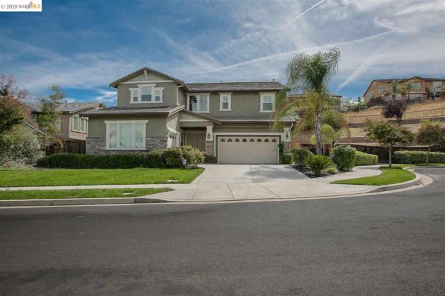 2804 Blue Oak Ct, Brentwood, CA 94513 (#40838872) :: Estates by Wendy Team