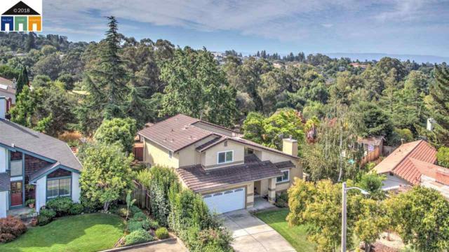 2811 Colony View Pl, Hayward, CA 94541 (#40839118) :: Estates by Wendy Team