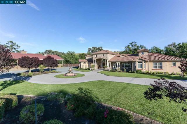 5530 Johnston Rd, Pleasanton, CA 94588 (#40839127) :: Armario Venema Homes Real Estate Team