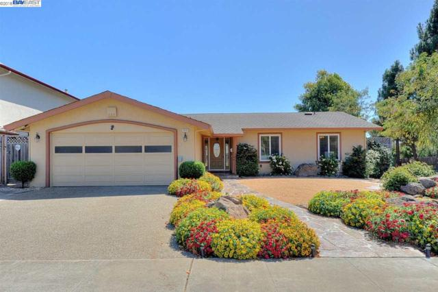 4976 Derby Pl, Newark, CA 94560 (#40839170) :: Estates by Wendy Team