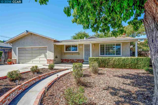 1113 Wagoner Dr, Livermore, CA 94550 (#40839215) :: The Lucas Group