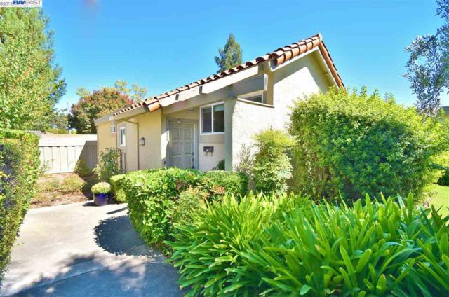 1689 Calle Santiago, Pleasanton, CA 94566 (#40839223) :: Armario Venema Homes Real Estate Team