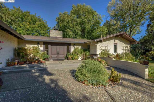 623 Escondido Ct, Livermore, CA 94550 (#40839283) :: Armario Venema Homes Real Estate Team