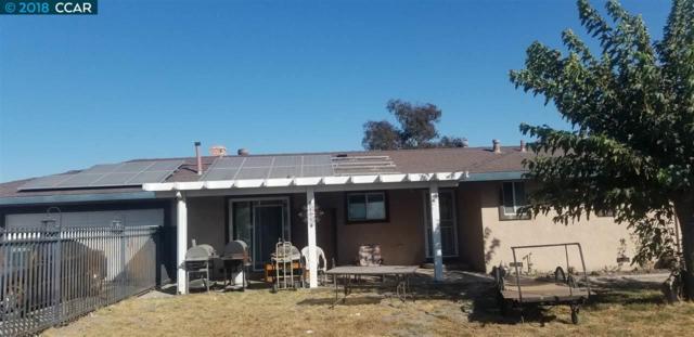 5320 Tule Tree Lane, Oakley, CA 94561 (#40839289) :: The Lucas Group
