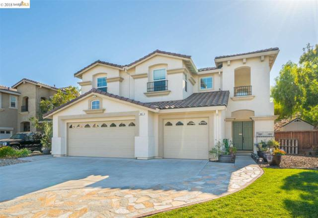 561 Douglas Dr, Brentwood, CA 94513 (#40839475) :: Estates by Wendy Team