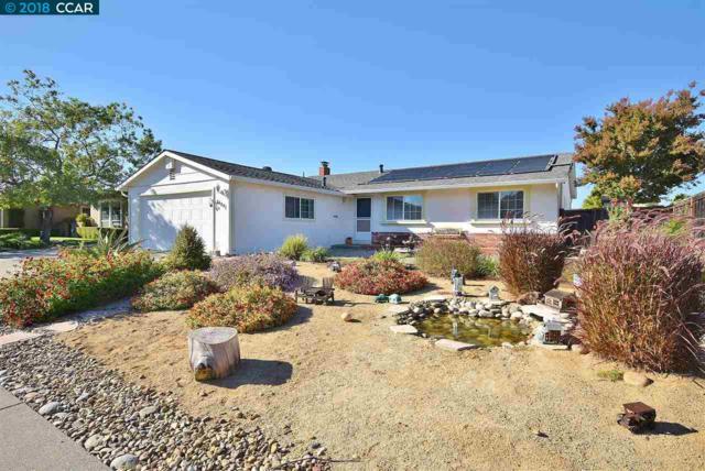 1639 Martindale Dr, Martinez, CA 94553 (#40839783) :: Estates by Wendy Team