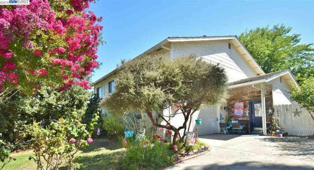 2459 Dos Rios Dr, San Ramon, CA 94583 (#40839805) :: Estates by Wendy Team