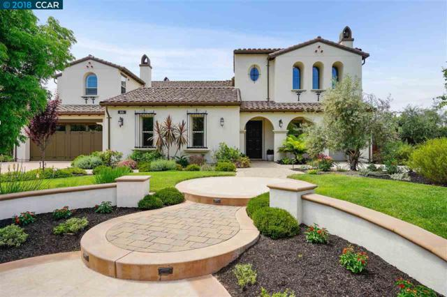 16 Treetop Terrace Ct, Alamo, CA 94507 (#40839835) :: The Grubb Company
