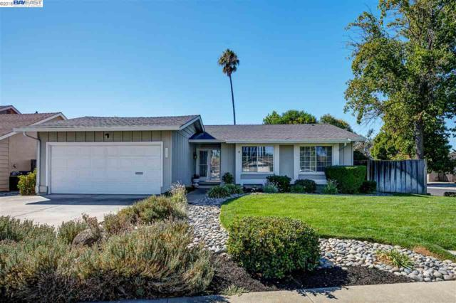 1290 Lakehurst Rd, Livermore, CA 94551 (#40839974) :: Estates by Wendy Team