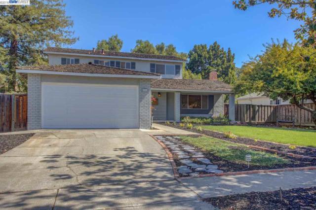 42668 Lerwick Street, Fremont, CA 94539 (#40840103) :: The Lucas Group