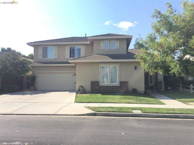 768 Craig Ct, Brentwood, CA 94513 (#40840237) :: Armario Venema Homes Real Estate Team