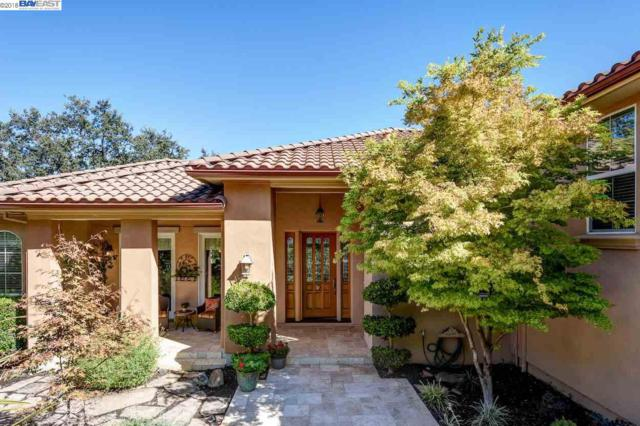 528 Bunker Ln, Pleasanton, CA 94566 (#40840305) :: Armario Venema Homes Real Estate Team