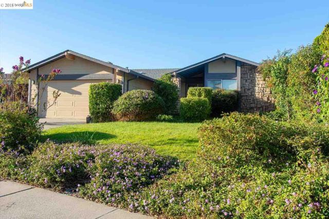 1480 Mallard Ln, Oakley, CA 94561 (#40840317) :: The Lucas Group