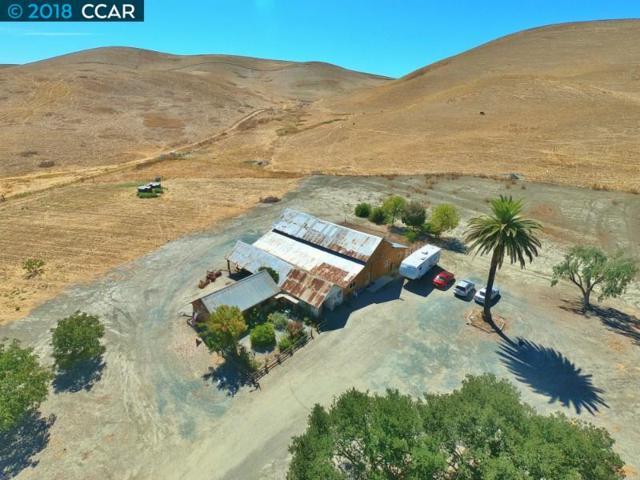 5658 Doolan Rd, Livermore, CA 94551 (#40840687) :: Estates by Wendy Team