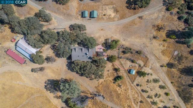 19011 Mines Rd, Livermore, CA 94550 (#40840841) :: Estates by Wendy Team