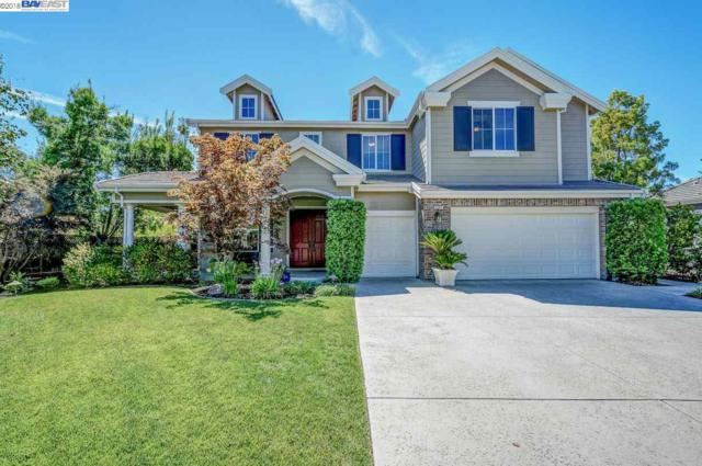 387 Mullin Ct, Pleasanton, CA 94566 (#40841037) :: Armario Venema Homes Real Estate Team