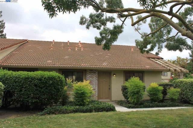 447 Colony Knoll Dr, San Jose, CA 95123 (#40841154) :: Estates by Wendy Team