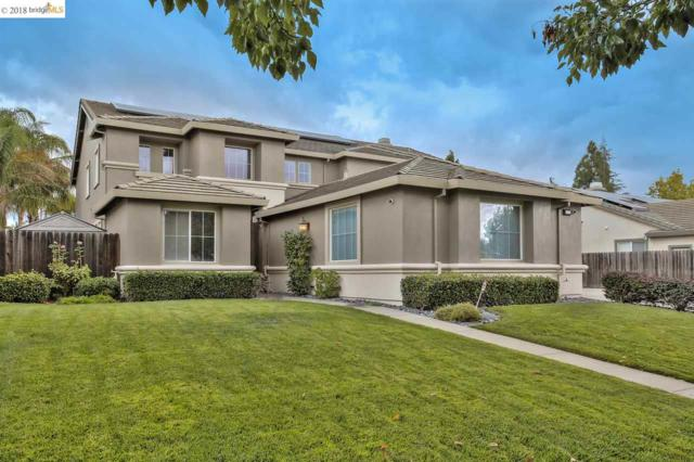 1073 Vineyard Dr, Oakley, CA 94561 (#40841186) :: Estates by Wendy Team