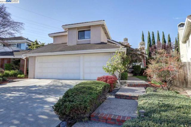1929 Cameron Hills Ct, Fremont, CA 94539 (#40841447) :: Armario Venema Homes Real Estate Team