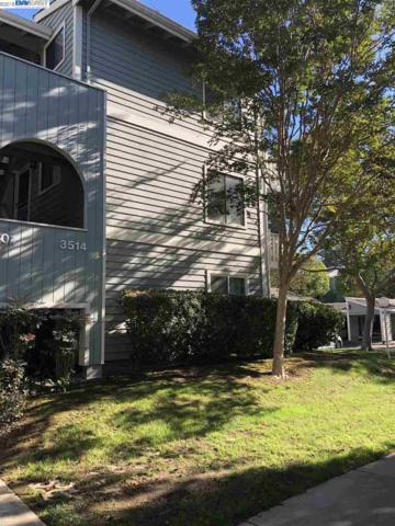 3514 Birchwood Terrace #101, Fremont, CA 94536 (#40841531) :: Estates by Wendy Team
