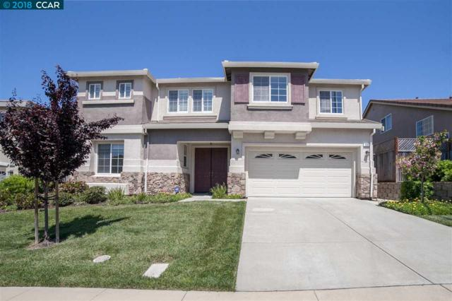 225 Tanglewood Dr, Richmond, CA 94806 (#40841656) :: The Lucas Group