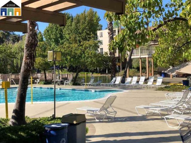490 N Civic Dr #205, Walnut Creek, CA 94596 (#40841819) :: The Lucas Group
