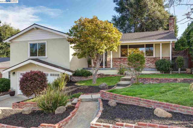 4431 Cristy Way, Castro Valley, CA 94546 (#40841836) :: The Lucas Group