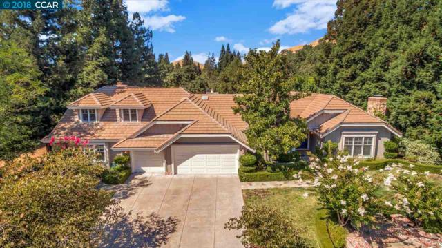 1485 Emmons Canyon Dr, Alamo, CA 94507 (#40841959) :: Estates by Wendy Team