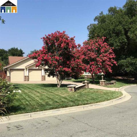 5 Rachel Ranch Ct, Clayton, CA 94517 (#40841967) :: RE/MAX Blue Line