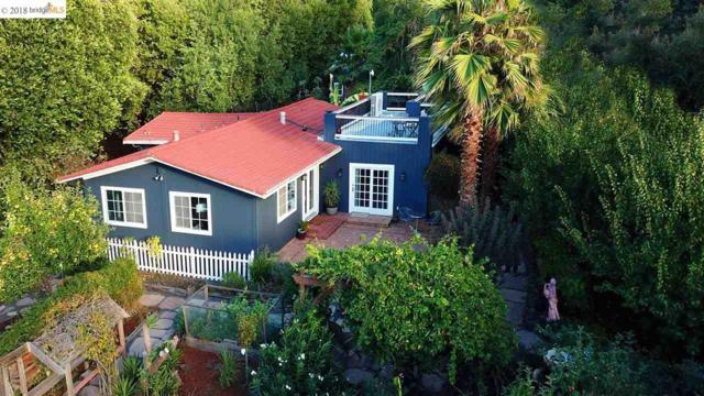 300 Bear Oaks Ln, Martinez, CA 94553 (#40842020) :: Armario Venema Homes Real Estate Team