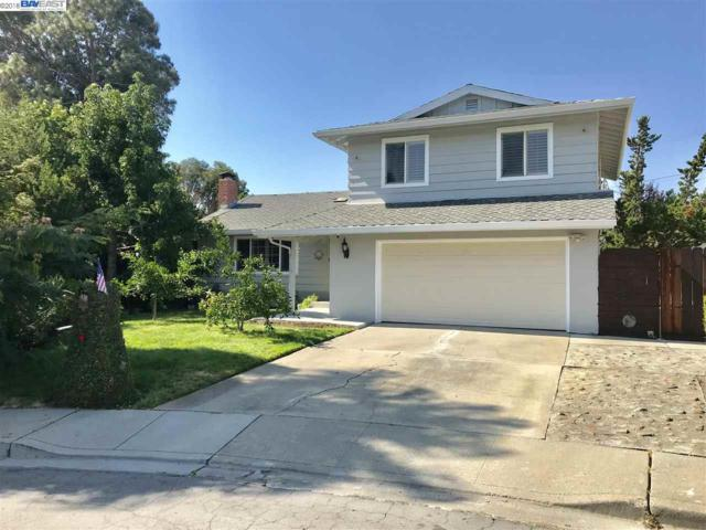 48001 Starlite Ct, Fremont, CA 94539 (#40842067) :: The Lucas Group