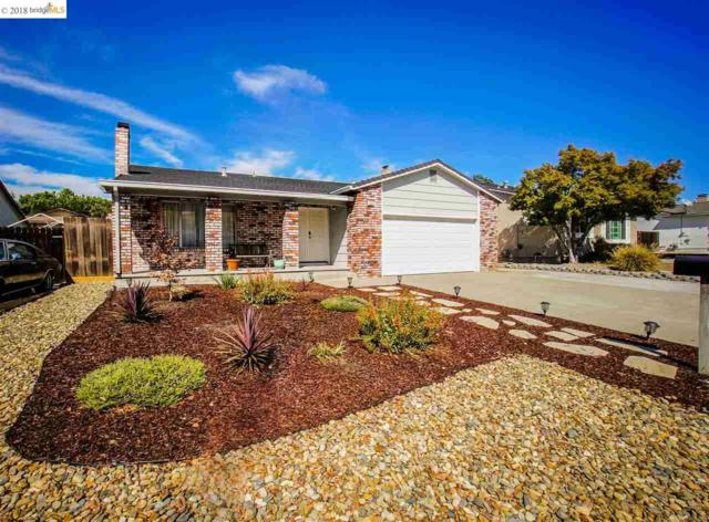 1024 Gatter Dr, Antioch, CA 94509 (#40842170) :: Estates by Wendy Team